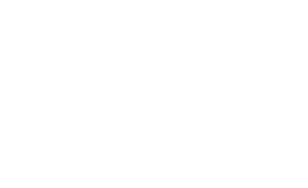 Occupy Wall Street timeline